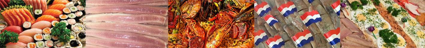 gerechten vishandel J&J