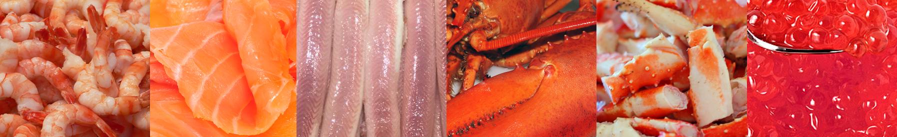 garnalen zalm paling kreeft krab kaviaar